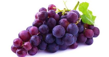 polza-vinograda-rst